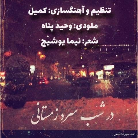 دانلود آهنگ در شب سرد زمستانی از کمیل