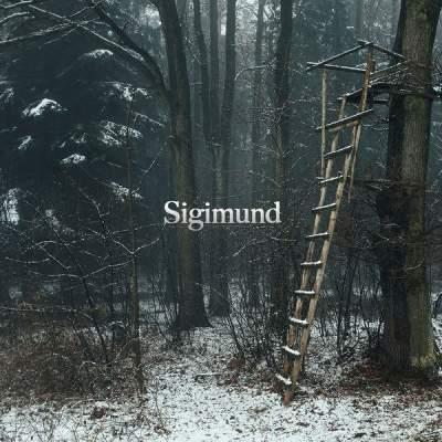 دانلود آهنگ The Watchtower از Sigimund