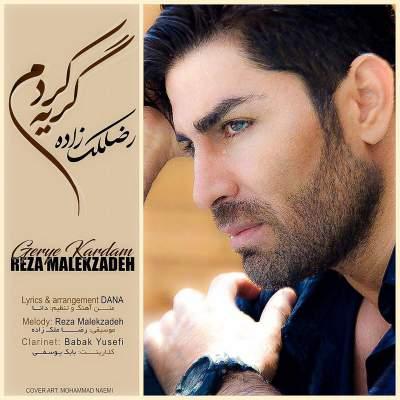 آهنگ جدید گریه کردم از رضا ملک زاده