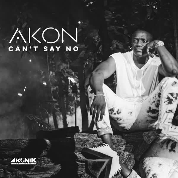 دانلود آهنگ Cant Say No از Akon
