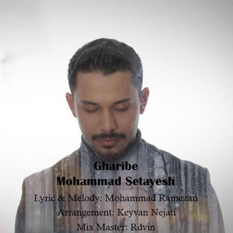 دانلود آهنگ غریبه از محمد ستایش