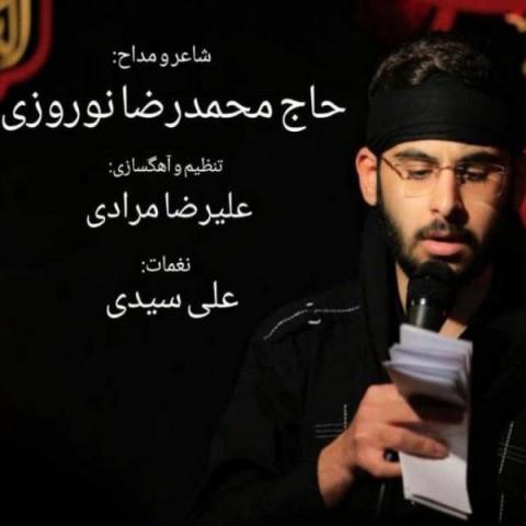 دانلود آهنگ عاشق هوشیار از محمدرضا نوروزی