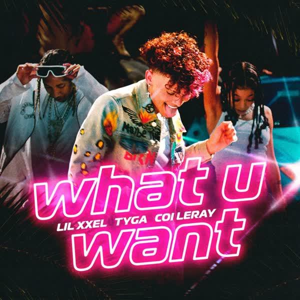 دانلود آهنگ What U Want از Tyga