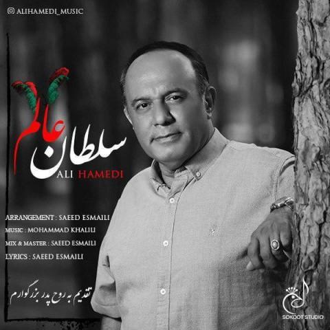 دانلود آهنگ سلطان عالم از علی حامدی